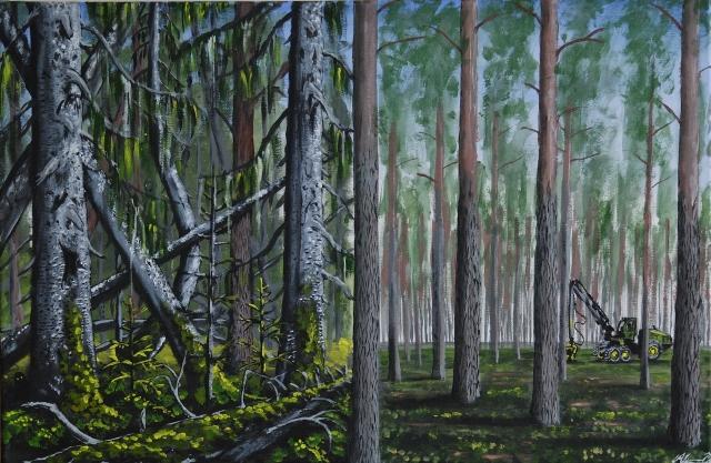 obom_fore_och_efter_skogsbruket